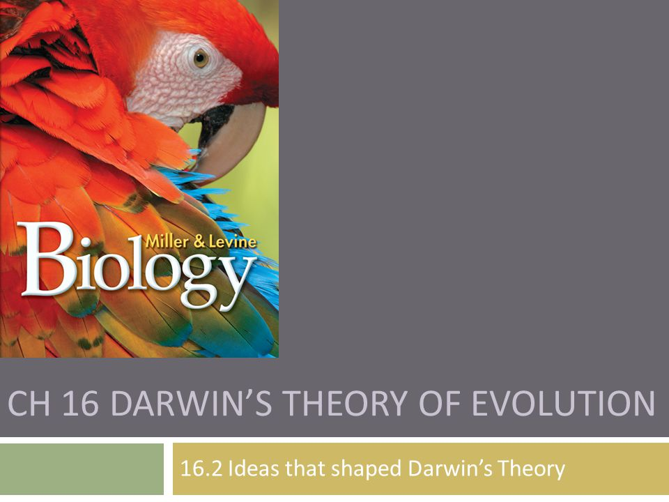 Ch 16 Darwin's Theory of Evolution