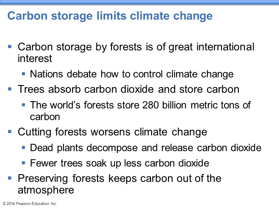 Carbon storage limits climate change