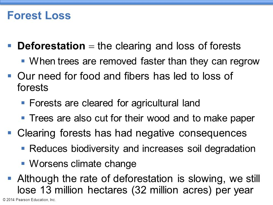 Forest Loss Deforestation = the clearing and loss of forests