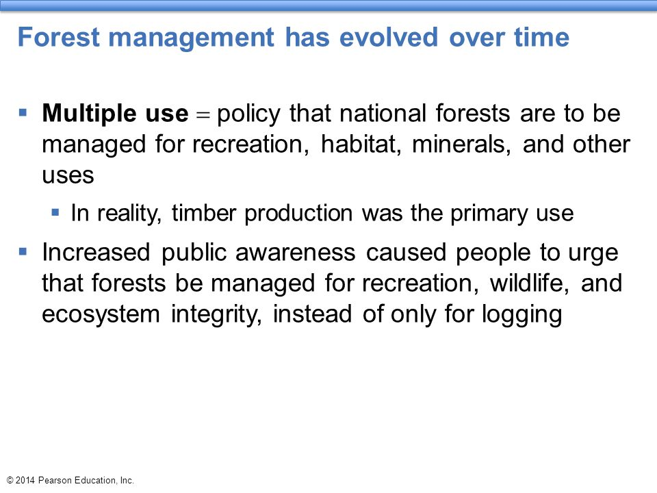 Forest management has evolved over time