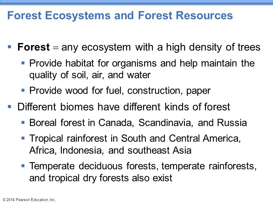 Forest Ecosystems and Forest Resources