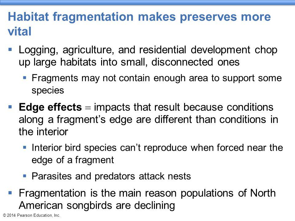 Habitat fragmentation makes preserves more vital