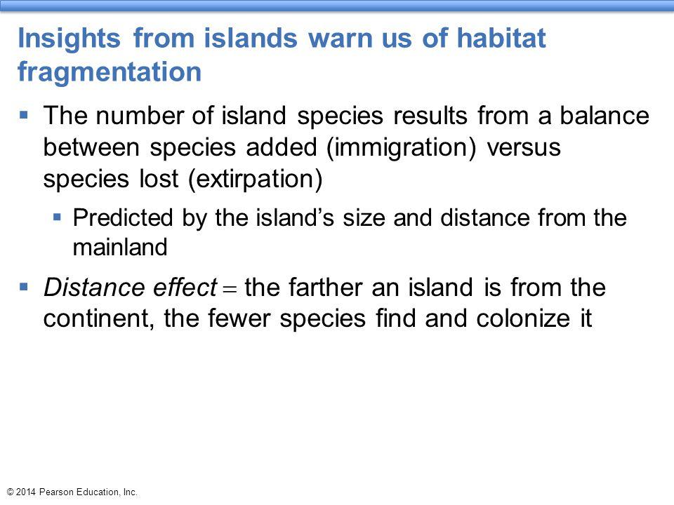 Insights from islands warn us of habitat fragmentation