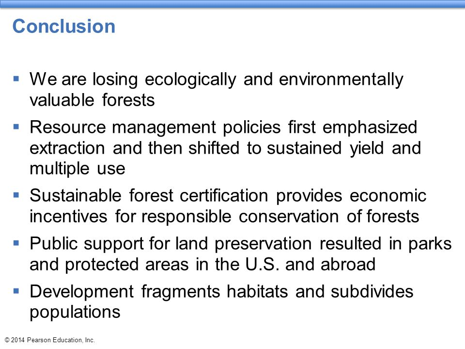 Conclusion We are losing ecologically and environmentally valuable forests.