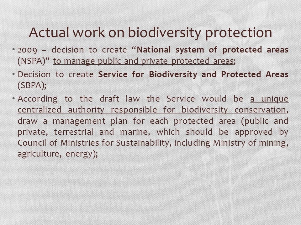 Actual work on biodiversity protection