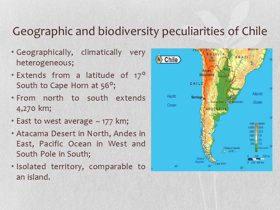 Geographic and biodiversity peculiarities of Chile