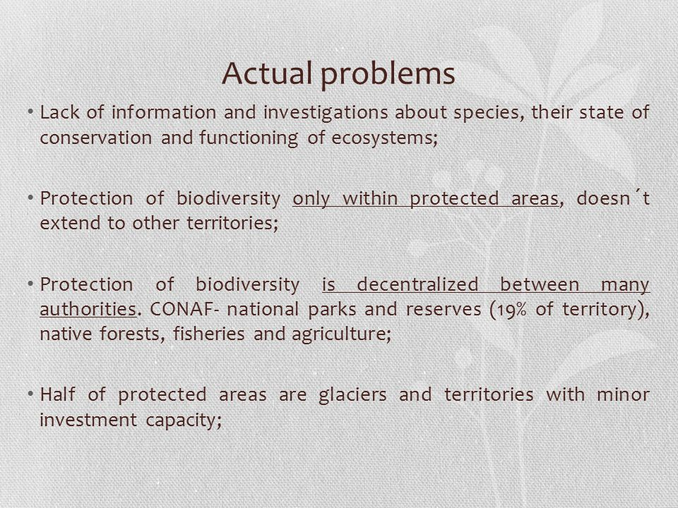 Actual problems Lack of information and investigations about species, their state of conservation and functioning of ecosystems;