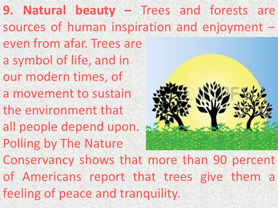 9. Natural beauty – Trees and forests are sources of human inspiration and enjoyment – even from afar. Trees are