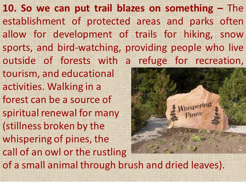 10. So we can put trail blazes on something – The establishment of protected areas and parks often allow for development of trails for hiking, snow sports, and bird-watching, providing people who live outside of forests with a refuge for recreation, tourism, and educational