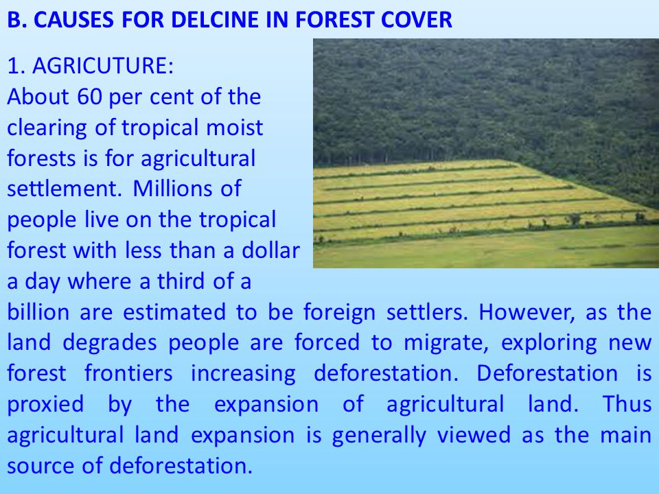 B. CAUSES FOR DELCINE IN FOREST COVER