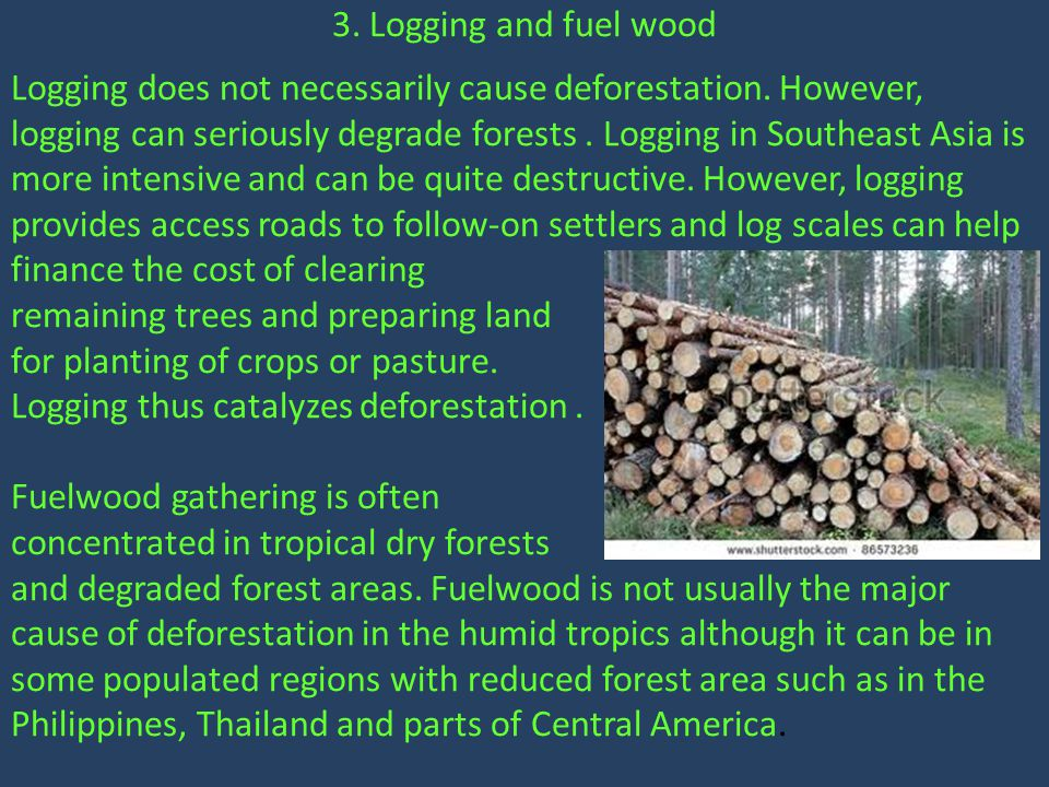 3. Logging and fuel wood