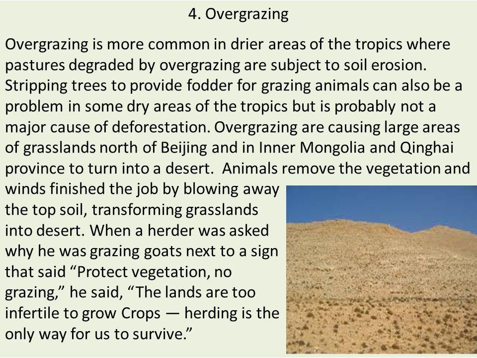 4. Overgrazing