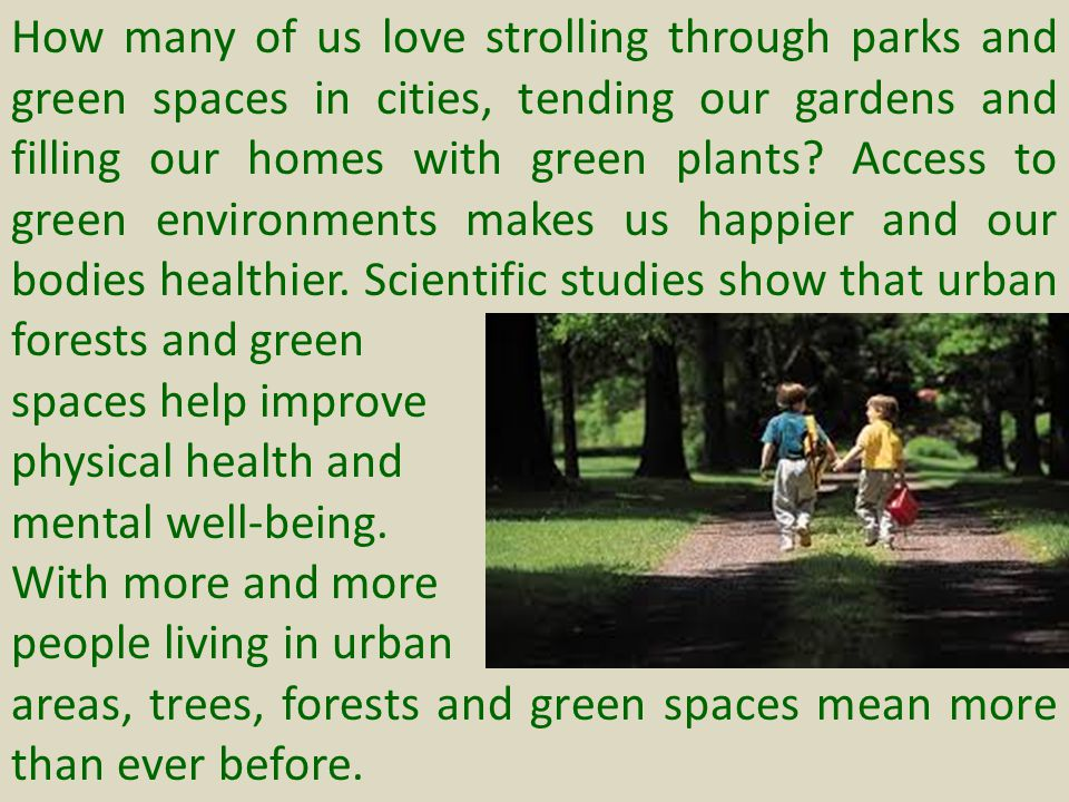 How many of us love strolling through parks and green spaces in cities, tending our gardens and filling our homes with green plants Access to green environments makes us happier and our bodies healthier. Scientific studies show that urban forests and green