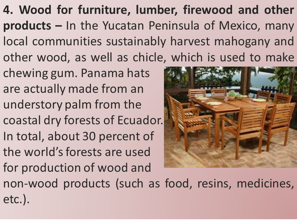 4. Wood for furniture, lumber, firewood and other products – In the Yucatan Peninsula of Mexico, many local communities sustainably harvest mahogany and other wood, as well as chicle, which is used to make chewing gum. Panama hats