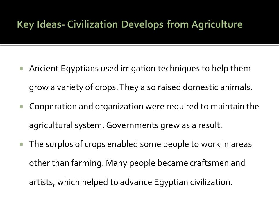 Key Ideas- Civilization Develops from Agriculture