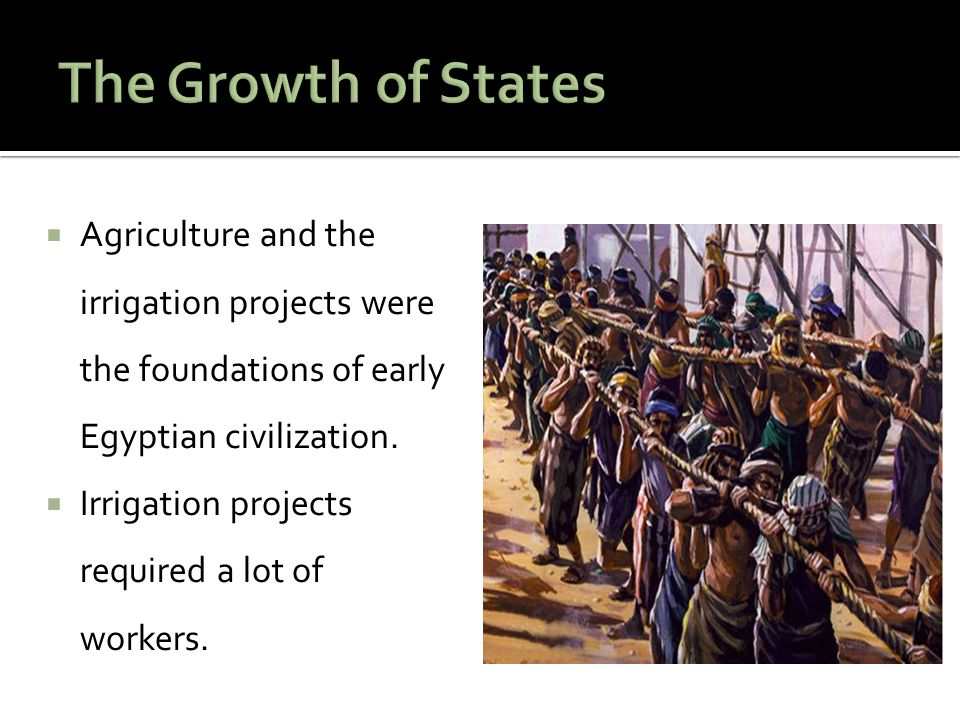 The Growth of States Agriculture and the irrigation projects were the foundations of early Egyptian civilization.