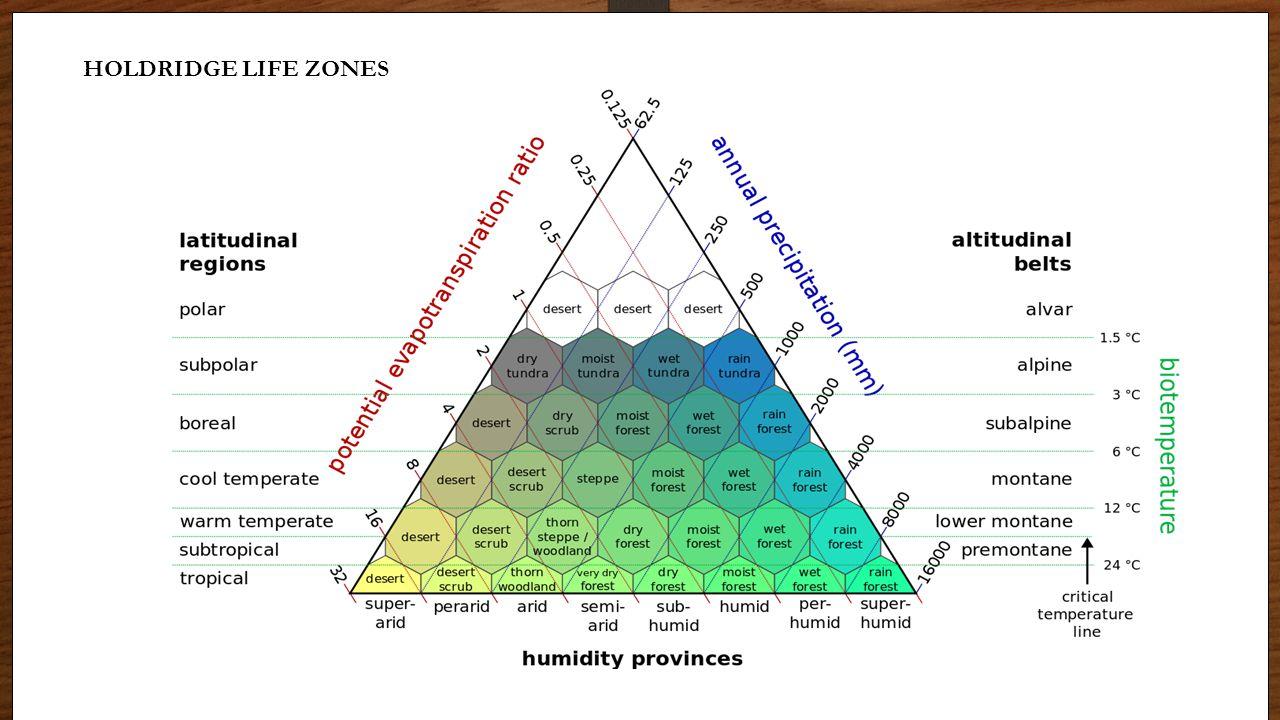HOLDRIDGE LIFE ZONES Biome Graphs