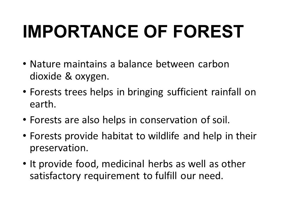 IMPORTANCE OF FOREST Nature maintains a balance between carbon dioxide & oxygen. Forests trees helps in bringing sufficient rainfall on earth.
