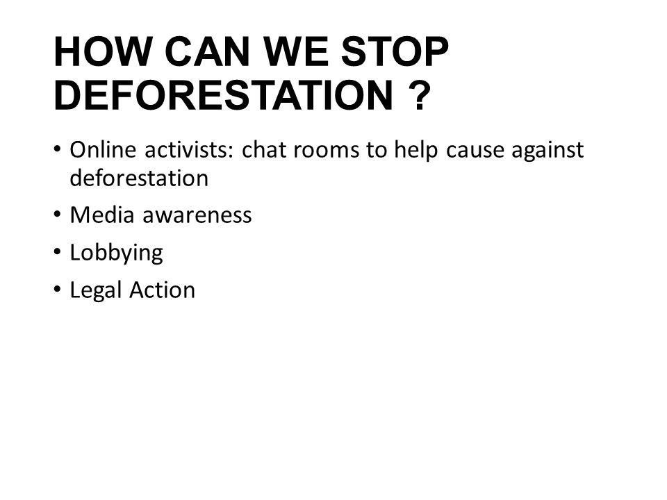 HOW CAN WE STOP DEFORESTATION