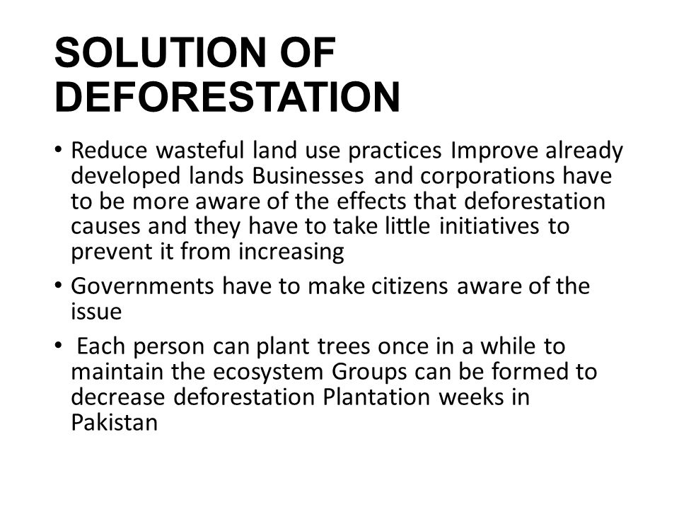 english essay about deforestation Destruction of forests in the world by human beings means self destruction throw some light as a result of deforestation carbon-dioxide will english essay.