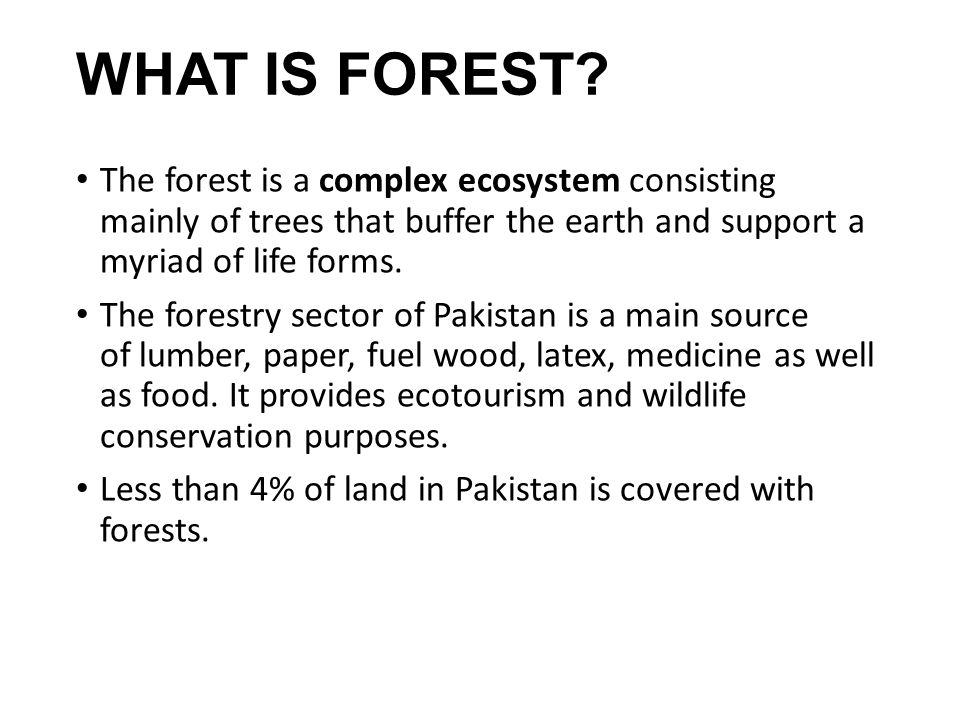 WHAT IS FOREST The forest is a complex ecosystem consisting mainly of trees that buffer the earth and support a myriad of life forms.