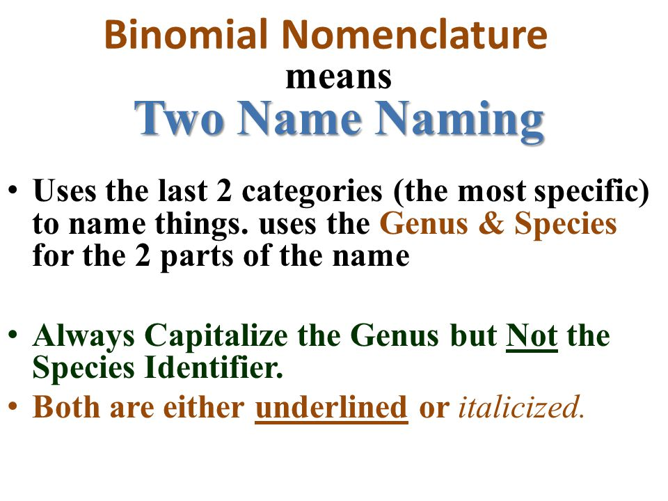 Binomial Nomenclature means Two Name Naming
