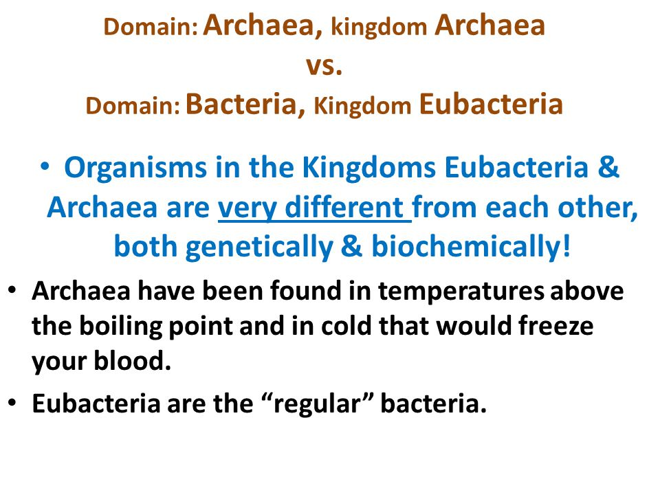Domain: Archaea, kingdom Archaea vs
