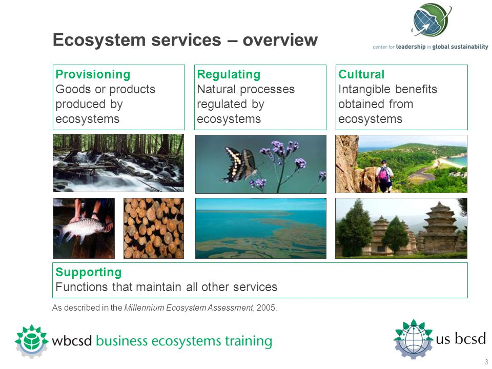 Ecosystem services – overview