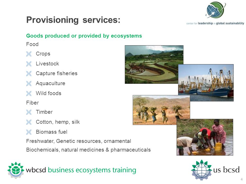 Provisioning services: