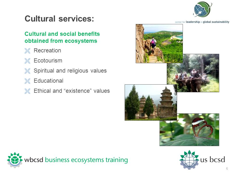 Cultural services: Cultural and social benefits obtained from ecosystems. Recreation. Ecotourism.