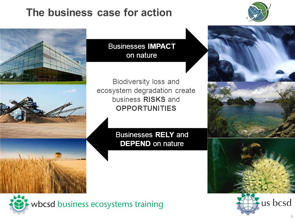 The business case for action