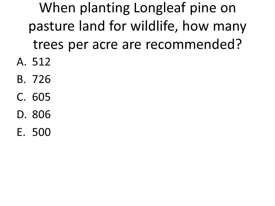 When planting Longleaf pine on pasture land for wildlife, how many trees per acre are recommended