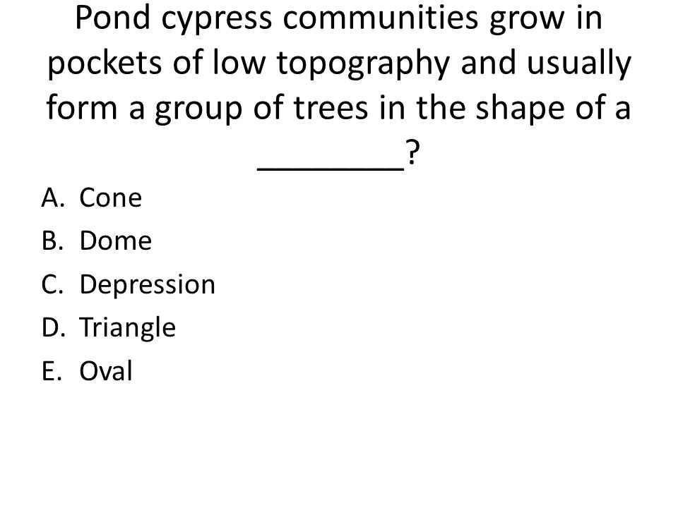 Pond cypress communities grow in pockets of low topography and usually form a group of trees in the shape of a ________