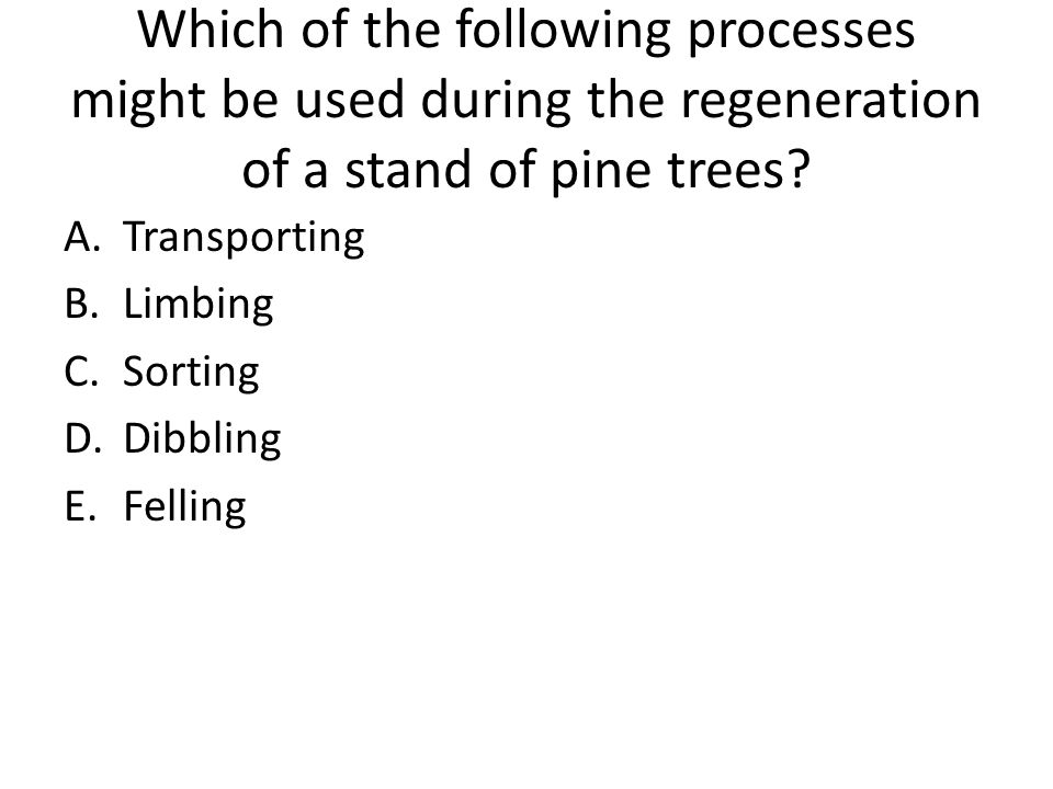 Which of the following processes might be used during the regeneration of a stand of pine trees