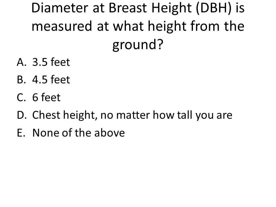 Diameter at Breast Height (DBH) is measured at what height from the ground