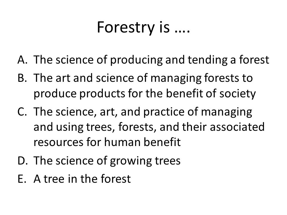 Forestry is …. The science of producing and tending a forest
