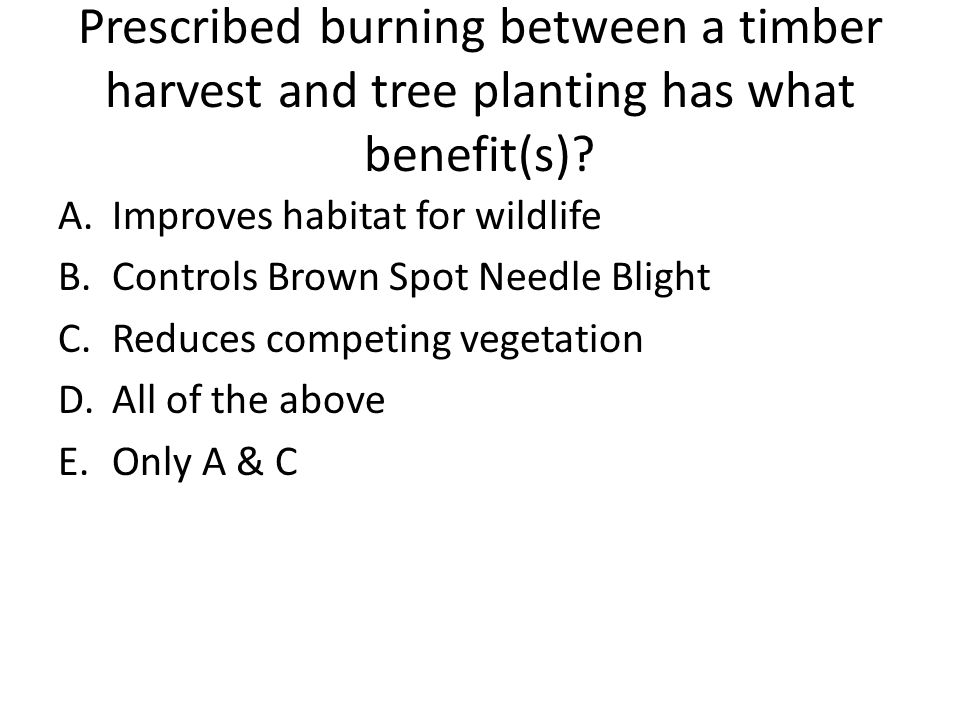 Prescribed burning between a timber harvest and tree planting has what benefit(s)
