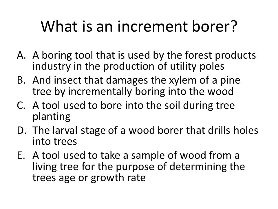 What is an increment borer