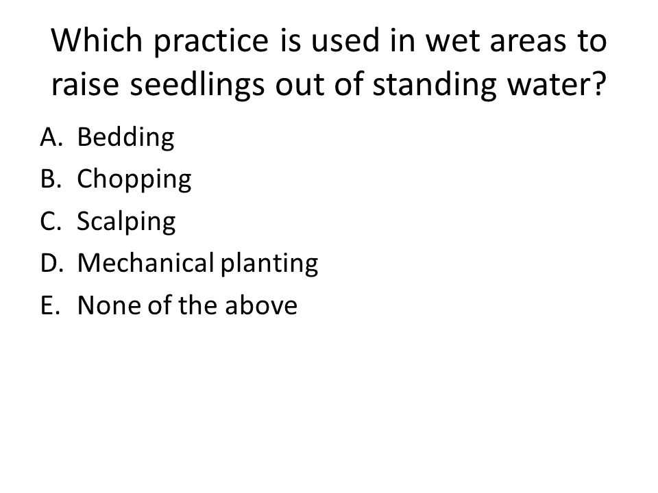 Which practice is used in wet areas to raise seedlings out of standing water
