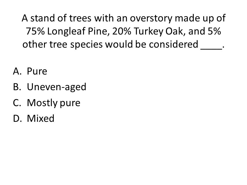 A stand of trees with an overstory made up of 75% Longleaf Pine, 20% Turkey Oak, and 5% other tree species would be considered ____.