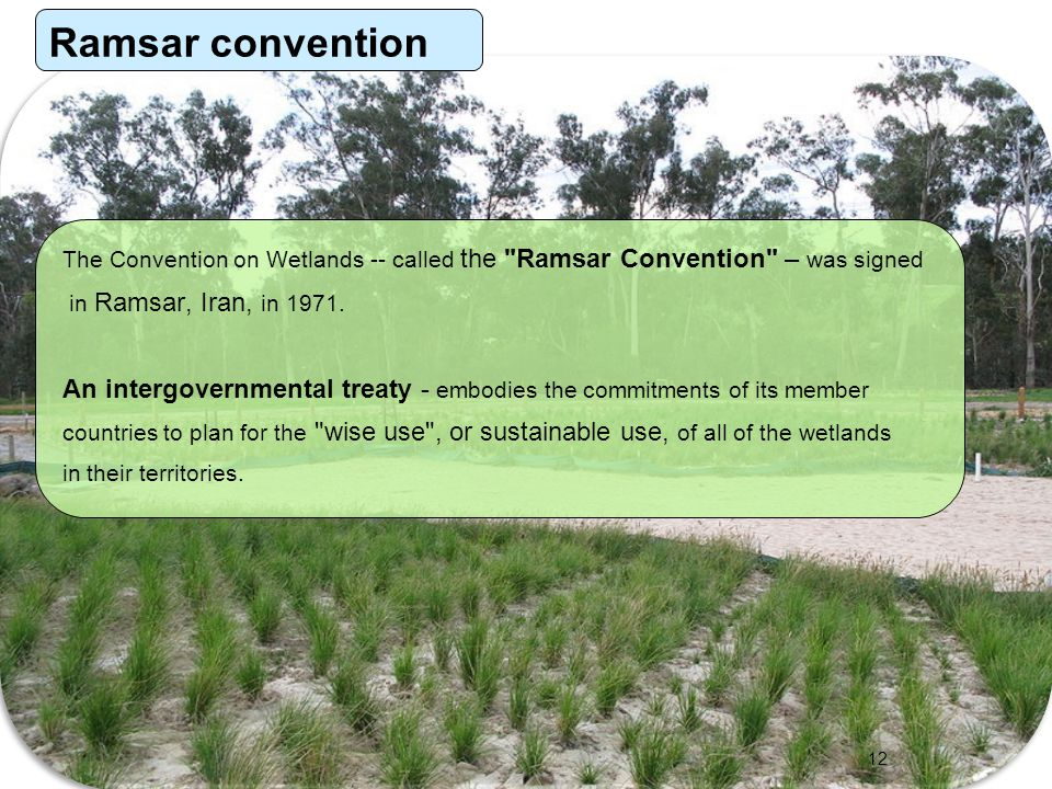 Ramsar convention The Convention on Wetlands -- called the Ramsar Convention – was signed. in Ramsar, Iran, in 1971.