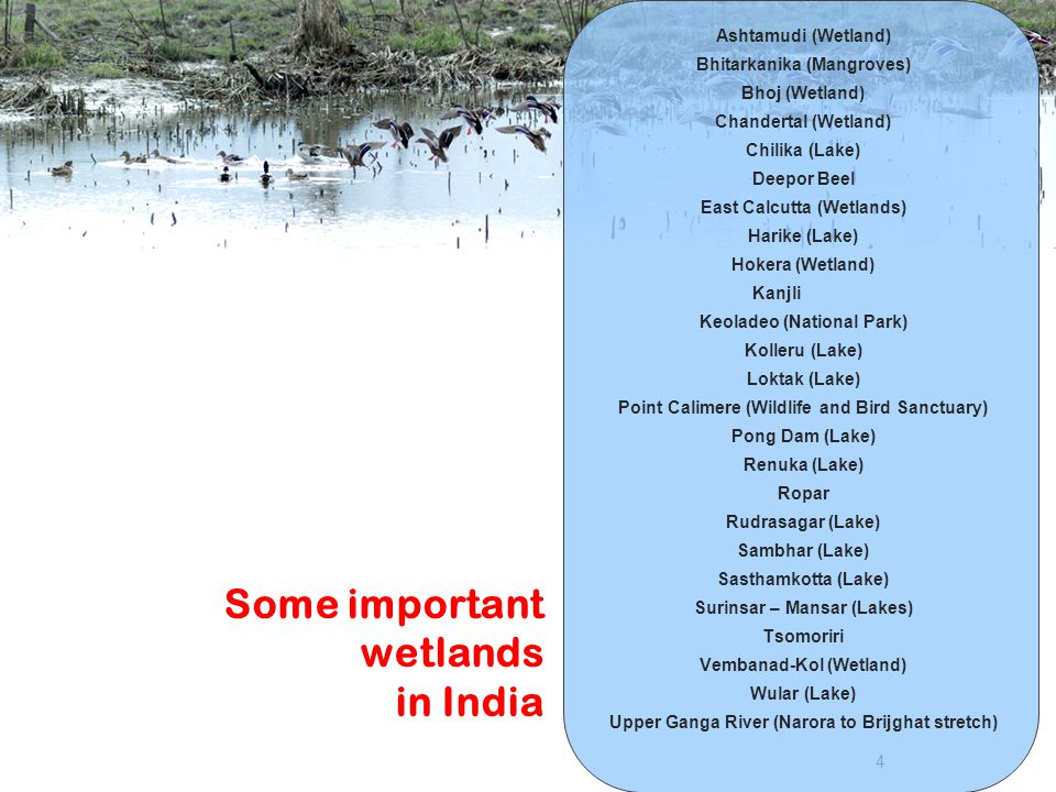 Some important wetlands in India