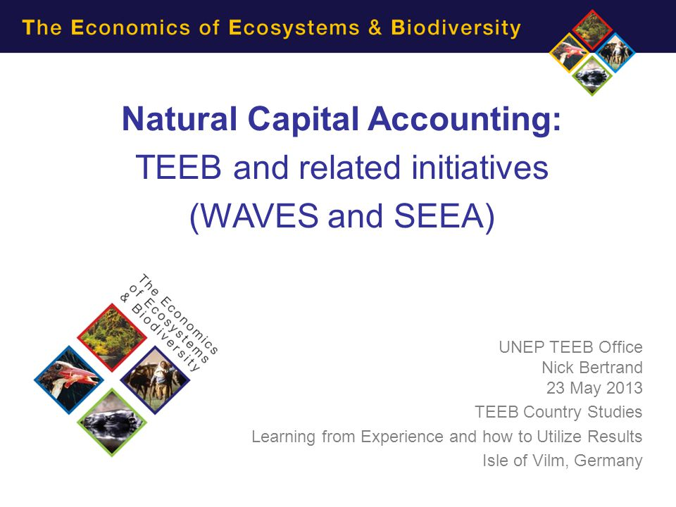 Natural Capital Accounting: