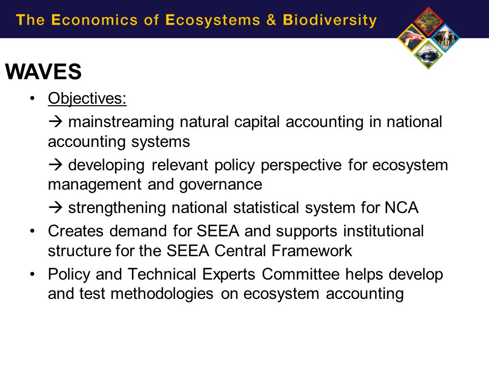 WAVES Objectives:  mainstreaming natural capital accounting in national accounting systems.