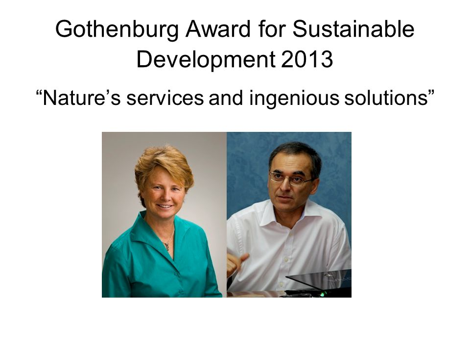 Gothenburg Award for Sustainable Development 2013