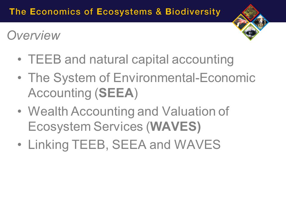 Overview TEEB and natural capital accounting. The System of Environmental-Economic Accounting (SEEA)