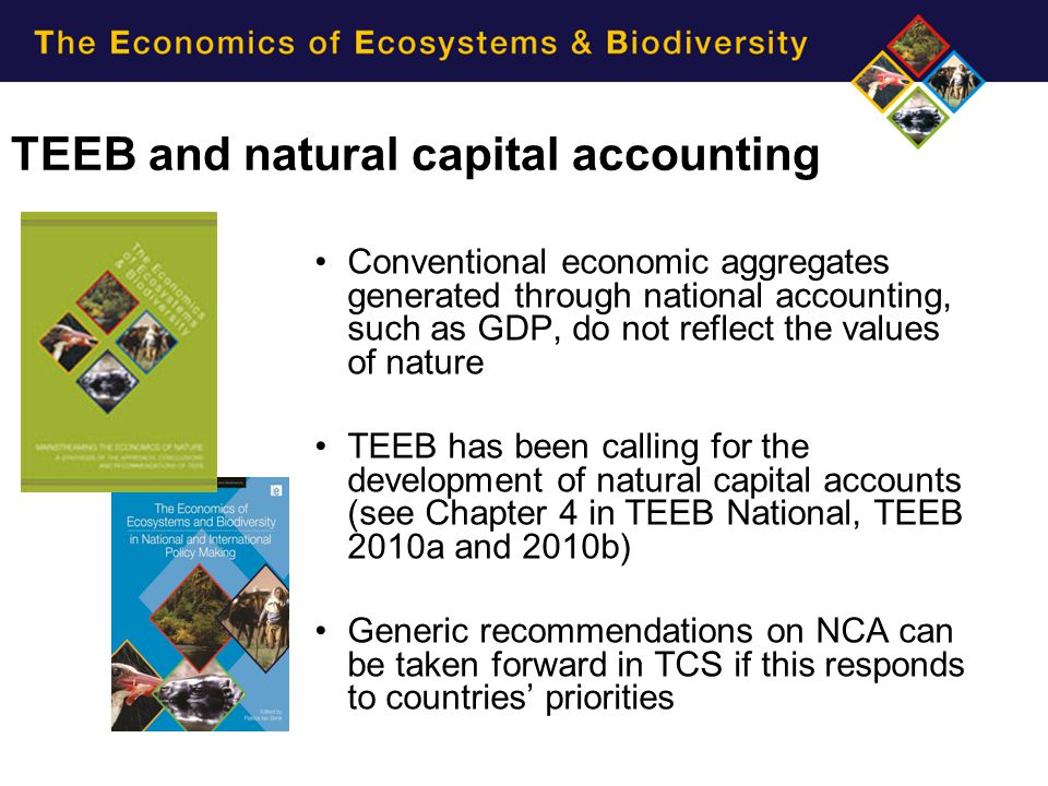 TEEB and natural capital accounting