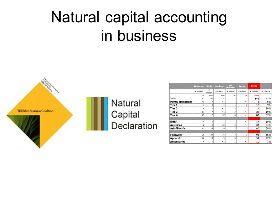 Natural capital accounting in business