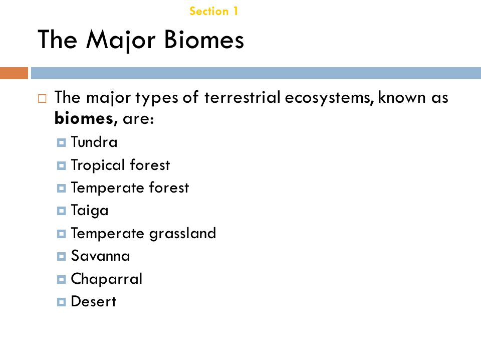 Section 1 Terrestrial Biomes