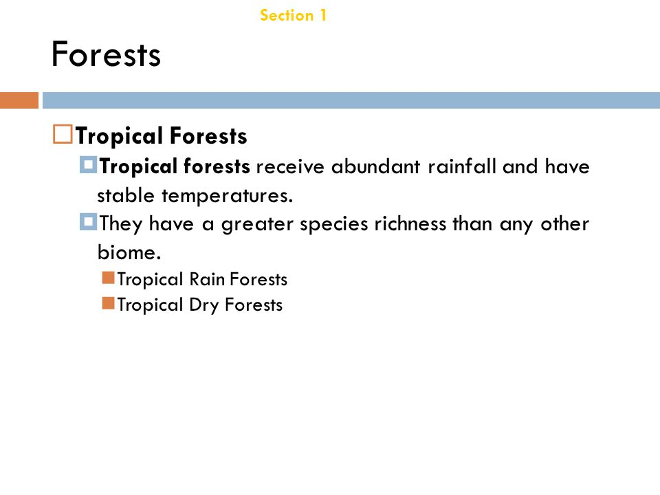 Forests Tropical Forests Chapter 21
